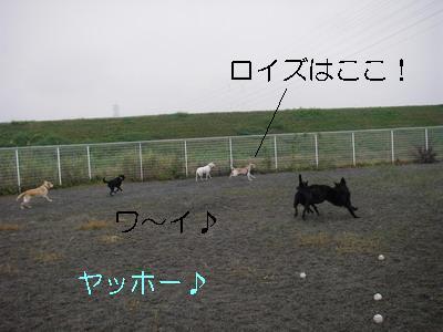 2008-11-16-1.jpg
