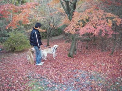 2008-11-24-1.jpg