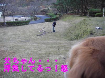 2008-12-2-1.jpg