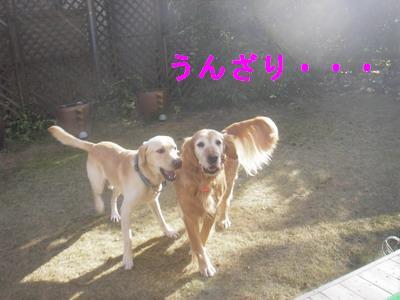 2008-12-20-.jpg