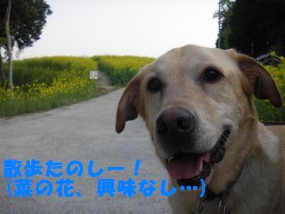 2009-04-30-2.jpg