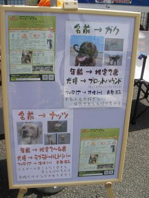 2009-05-02-2.jpg