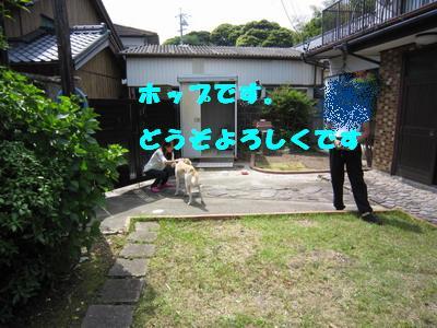 2010-05-08-1.jpg